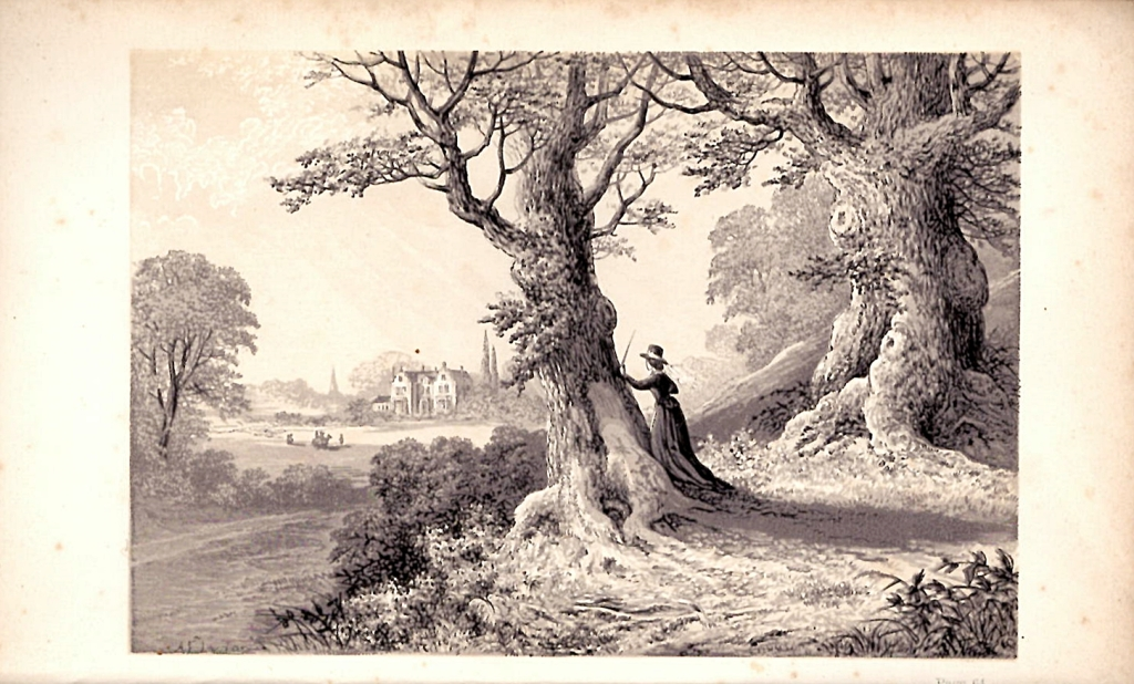 Black and white picture of woman in woods viewing a distant house.